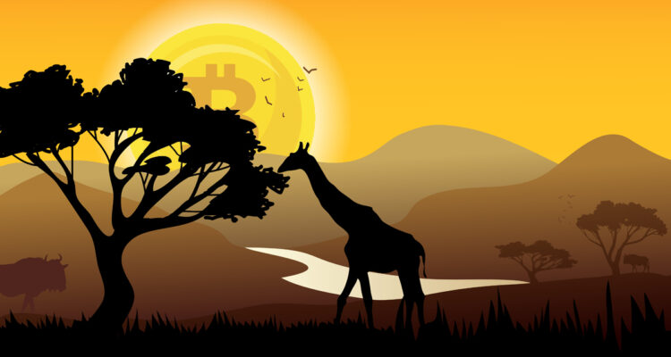 Africa is now eyed for crypto trade for exchanges like Binance