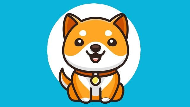 Baby Doge Coin Elon Musk's newest crypto favorite